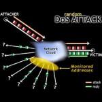 Servere EDU compromise implicate în atacuri de tip DoS